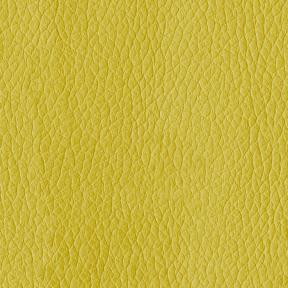 Turner 54 Citron