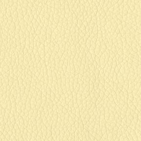 Turner 605 Parchment
