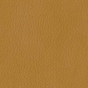 Turner 608 Sandstone