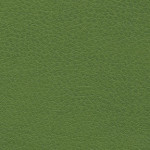 Brisa_303-4448_AppleGreen