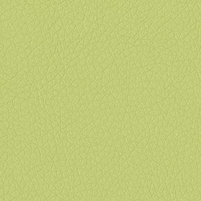 dillon_apple_green