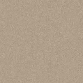 Fabric_ApolloSilicone_Latte