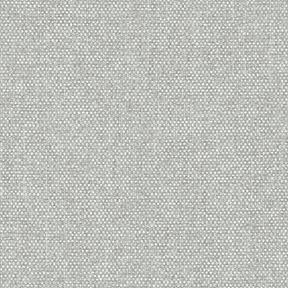 Fabric_Gravity_Lichen