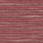 Fabric_Relativity_Carmine
