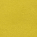 Fabric_Canter_Citrus