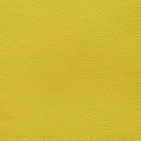 Fabric_Canter_Citrus