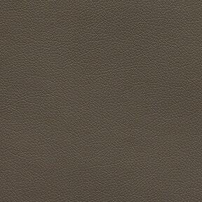 Fabric_Canter_Graphite