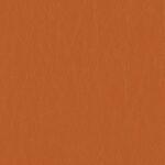 Fabric_Caressa_Tangerine
