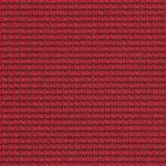 Fabric_Expo_Raspberry