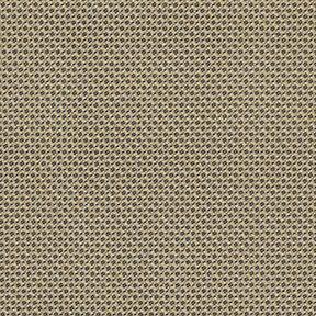 Fabric_Odyssey_Oliver