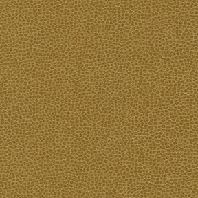 Fabric_Promessa_Camel